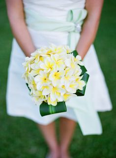 Plumeria for a wedding bouquet, nice!  Sunya flowers - Wendy Laurel Photography - maui wedding