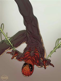 Only Spider-Man realted post.What's your favorite Spider?-Credit: for daily dose of comic memes news and artworks!-Like my posts and Express your opinion in comments! Marvel Comics, Marvel Vs, Marvel Heroes, All Spiderman, Amazing Spiderman, Spiderman Costume, Marvel Comic Character, Marvel Characters, Univers Marvel