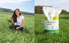 25 Pkg. (à 10 kg) Dauerwiesenmischung GRÜNLANDPROFI EB Versteigerung - Landwirt.com Shopping Bag, Shopping Tote Bags, Shopping Bags