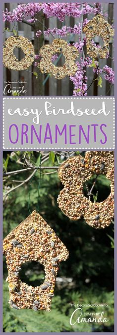 Make these easy birdseed ornaments from just a few items that you probably already have in your home. Peanut butter, cardboard, and birdseed!