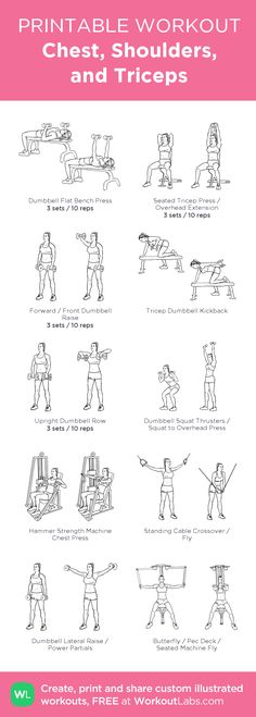 Chest, Shoulders, and Triceps · WorkoutLabs Fit Fitness Workouts, At Home Workouts, Fitness Motivation, Printable Workouts, Triceps Workout, Tricep And Shoulder Workout, Back And Bicep Workout, Chest Workouts, I Work Out