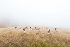 Exceptional Photos by June kim & Michelle Cho — T H E •• T W O