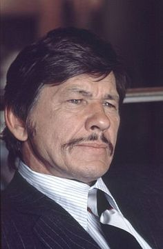Charles Bronson - If you are a bad guy, look out; Charles Bronson is going to kick your a$$!