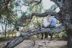 engagement photos trees | Rustic Trees Engagement | Mandy & Scott | Cami Jane Photography