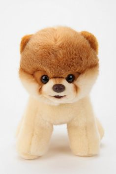 this has got to be the cutest dog that isnt real everrrrrrr  GUND Boo Plush Doll