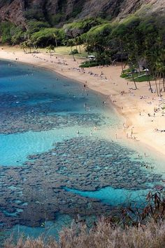 Hanauma Bay, Hawaiian Islands