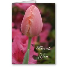 >>>Are you looking for          Pink Tulip Thank You Note Card           Pink Tulip Thank You Note Card we are given they also recommend where is the best to buyThis Deals          Pink Tulip Thank You Note Card Review from Associated Store with this Deal...Cleck Hot Deals >>> http://www.zazzle.com/pink_tulip_thank_you_note_card-137291236843469964?rf=238627982471231924&zbar=1&tc=terrest