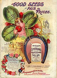 Northrup, King & Co. Seed Growers Good Seeds at Fair Prices (1898)