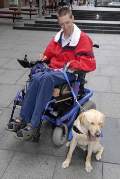 Assistance Dogs Australia - Gallery