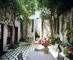 Lush planted courtyard with bold black and white tiled floor.