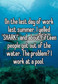 15 Weirdest Confessions About Sharks
