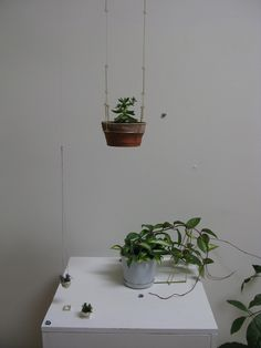 plant necklaces // mr kitly