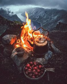 The art of camping 🔥 Bushcraft Camping, Camping Survival, Camping Gear, Outdoor Life, Outdoor Camping, Camping Outdoors, Camping Photography, Nature Photography, Camping Sauvage