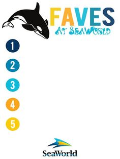 3x4 SeaWorld 5 Faves V2 with lines photo by jnmanderson