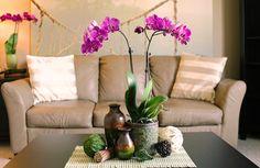 Unique Purple Orchid Pops in Beige Living Room