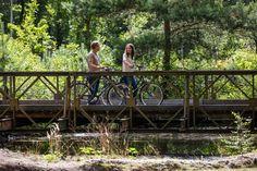 Routes in Brabant   VisitBrabant Outdoor Furniture, Outdoor Decor, Garden Bridge, Cycling, Walking, Outdoor Structures, Home Decor, Biking, Interior Design