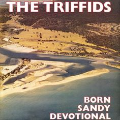 The Triffids - The Seabirds [Australian rock] with the full Born Sandy Devotional album on playlist Secret Of Love, Torch Song, Tender Is The Night, Fall To Pieces, Sea Birds, Sound Of Music, My Favorite Music, Music Songs, 80s Music