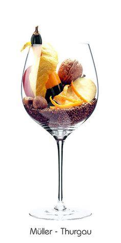 MÜLLER-THURGAU: Apfel, Walnuss, Zitronen (Schale), Orange (Schale), Mandel, Kürbis, Kümmel, Koriander