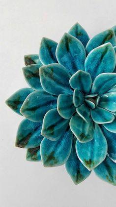 Porcelain Succulent Dream