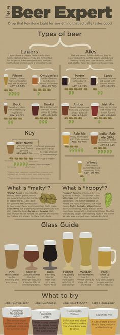 Be A Beer Expert #Infographic