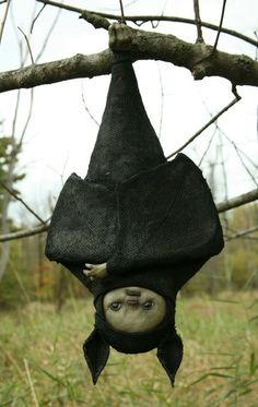 Need to figure this out. Awesome hanging bat for Halloween Fete Halloween, Halloween Doll, Creepy Halloween, Holidays Halloween, Halloween Crafts, Halloween Decorations, Creepy Toys, Scary Dolls, Creepy Cute