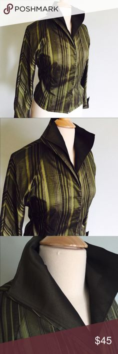 "Elegant evening blouse by  Carlisle Gorgeous iridescent green stripped blouse.  Hidden magnetic buttons.  Back has elegant zipper that can be zipped or left open. Cuff sleeves. Collar can be worn up or down. Two attached collars. Creates an elegant look. Bust 18"". Length 20"""" excellent condition.  Would fit a 4.  Last two pictures actual color. Carlisle Tops Blouses"