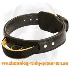 Astonishing Leather Dog Collar