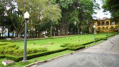 Parque da Água Branca, em São Paulo