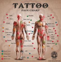m.tattoochief.com wp-content themes tatoo-mobile images chart.jpg