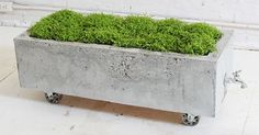 DIY Outdoor Furniture - Concrete Trough Planter
