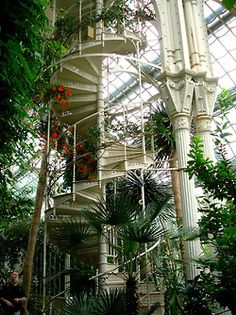 Staircase in the Palmhouse in Kew Gardens in London
