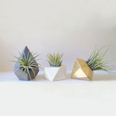 Tiny Geo Airplant Holders Gold