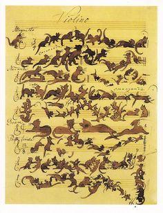 Cats violino :)