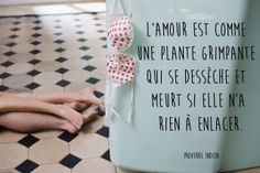 Proverbe amour indien