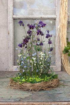 Prinsessan akleja - hur du gör ett arrangemang till försommarens fester - Blomsterverkstad