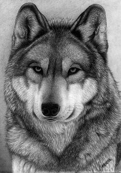 Portret wilk by waderra.deviantart.com on @deviantART