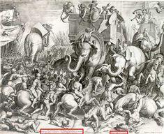 War elephant - Wikipedia, the free encyclopedia