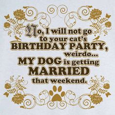 Cat Birthday, Dog Wedding Funny Novelty T Shirt Z12955, $18.99