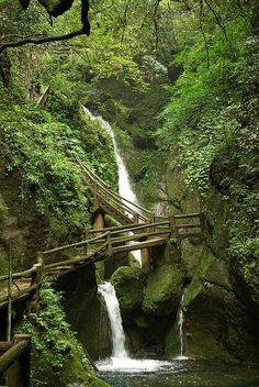 The path to taoist temples of QingCheng Mountain, Sichuan, China