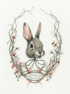 Courtney Brims: Lepus Australis