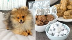 Recipe with video instructions: Try these three easy breakfast, dinner and dessert treats for your favorite furry friend. Ingredients: Frozen Coconut Treats:, ½ cup coconut oil, melted and cooled to the touch, fresh blueberries, Banana Cookies:, 3 cups rice krispie cereal, 1 ¼ cups unsalted beef or chicken broth, 1 ¼ cups whole wheat flour, 1 cup thinly sliced banana, 8 ounces ground beef, 1 large egg, Sardine and Oatmeal Dog Bones:, 2 large eggs, 3 cups quick-cooking oatmeal, 1 cup smooth…
