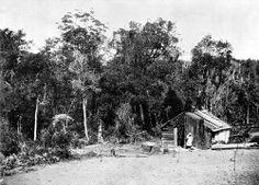 Woodcutter's Hut, Knysna Knysna, English Village, Inner World, Weird And Wonderful, Old Photos, Wonders Of The World, South Africa, Fields, Mirror