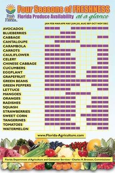 Curious about what produce is in season in #Florida at this time or planning on planting a garden in celebration of spring?  Turnips, Swiss Chard, Tomatoes and Strawberries are a few on the list of wonderful foods one could eat fresh today. Check out this Florida Produce Season Chart from the Organic Food Club, to help you purchase the best #fresh and #organic fruits and vegetable!  http://www.myorganicfoodclub.com/about-us/florida-produce-season-chart/  #gmofreeflorida #growyourown #fresh…