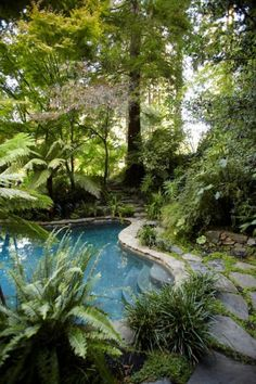 overgrown pool.   love this ➳