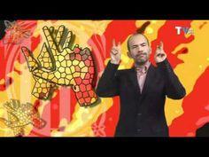 Llei llengua signes catalana - YouTube
