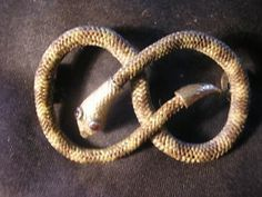 Amazing 9ct gold, snake, mourning, hair brooch £95