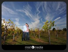 chicago-vineyard-engagement-photos-bb 01