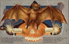 Batty Pumpkin Halloween - Superstitious