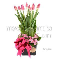 tulipanes-y-dianthus