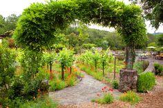 2014 BBY - Cathy's garden